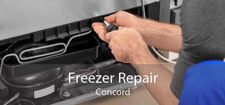 Freezer Repair Concord